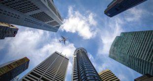 海外営業は新卒として適切か?